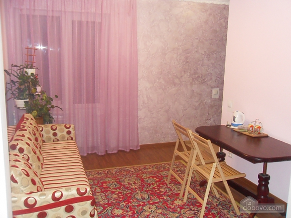 Apartment in Truskavets, Studio (58294), 006