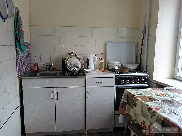 Comfortable apartment in Kiev, One Bedroom (10958), 008