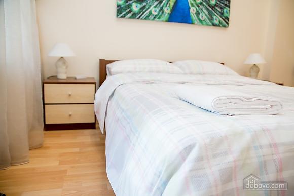 Apartment on Chaikovskoho, One Bedroom (84173), 006