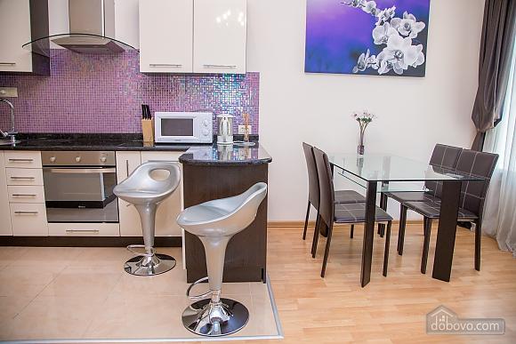 Apartment on Chaikovskoho, One Bedroom (84173), 024