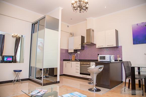 Apartment on Chaikovskoho, One Bedroom (84173), 025