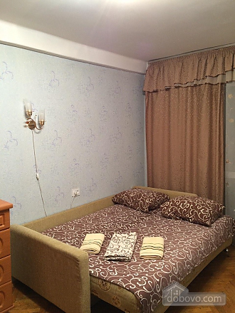 Apartment near to Chernihivska station, Monolocale (96681), 002