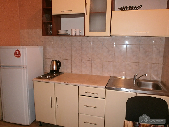 Квартира в центре рядом с парком Шевченко, 1-комнатная (11746), 008