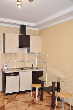 Cozy apartment in Kharkov, Monolocale, 002