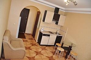 Cozy apartment in Kharkov, Monolocale, 003