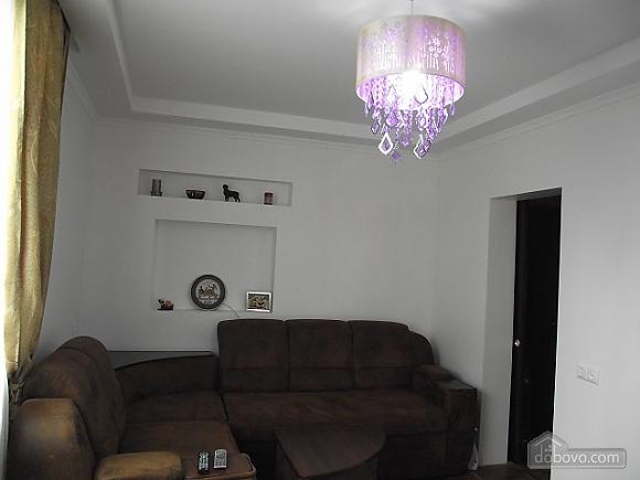 Квартира в центре, 1-комнатная (62547), 001