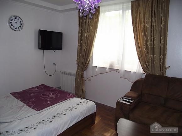 Квартира в центре, 1-комнатная (62547), 002