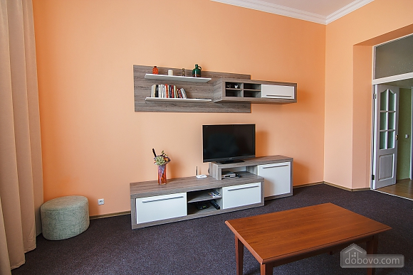 Apartment in the center of Kyiv, One Bedroom (72820), 004