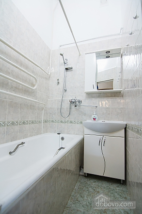 Apartment in the center of Kyiv, One Bedroom (72820), 011