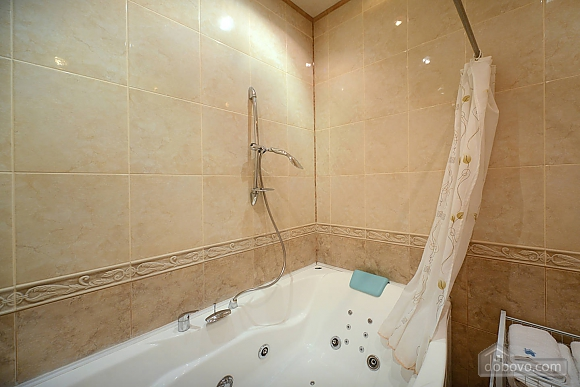 Luxury apartment in palace style with Jacuzzi in two steps from Khreschatyk, Two Bedroom (53873), 014