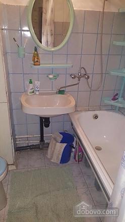 Apartment in Moskow, Monolocale (79216), 005