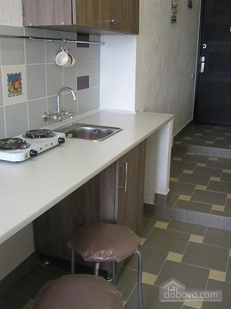Квартира в центре города, 1-комнатная (70983), 009