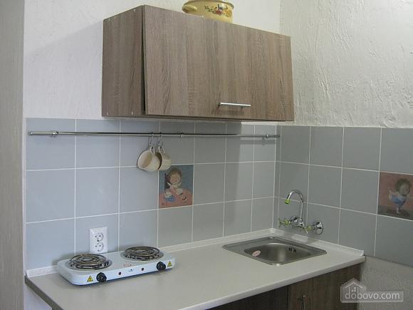 Apartment in the city center, Studio (80881), 002