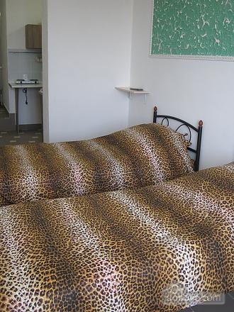 Квартира в центре города, 1-комнатная (80881), 007