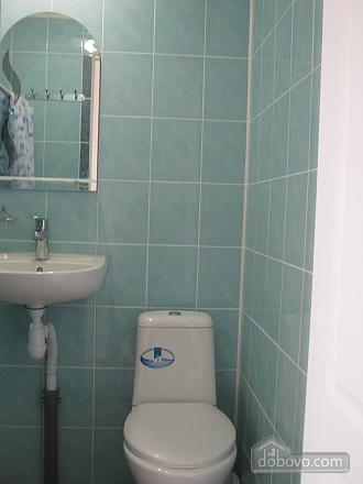 Apartment in the city center, Studio (80881), 010