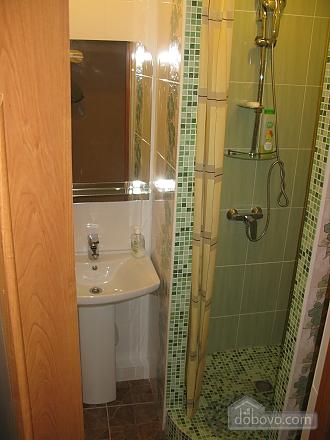 Квартира в центре, 2х-комнатная (12476), 006