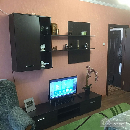 Renovated apartment with a new interior - cozy like at home, Monolocale (80052), 006