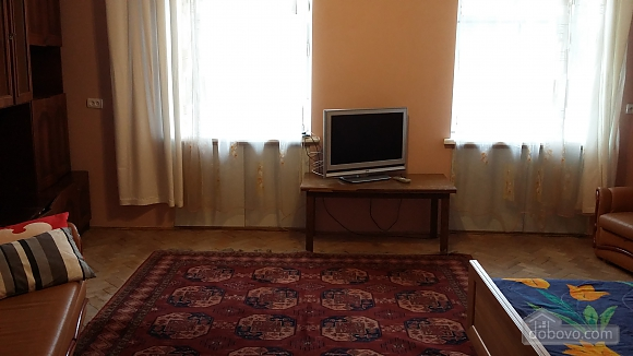 Apartment in the center of Lviv, Monolocale (47657), 006