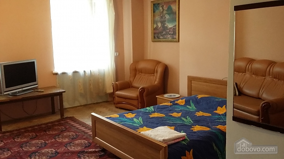 Apartment in the center of Lviv, Monolocale (47657), 001