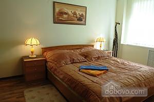 One bedroom apartment on Lesi Ukrainky (344), One Bedroom (19120), 014