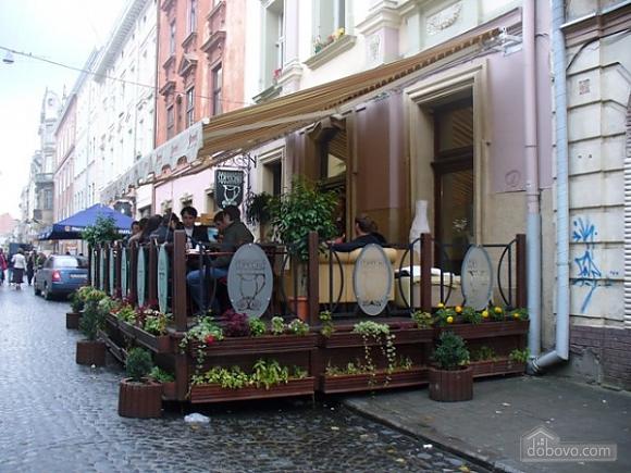 Apartment in Lviv, Studio (83561), 012