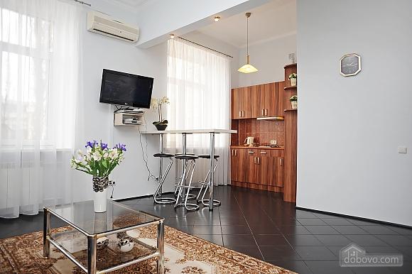 Spacious studio in the center, Studio (16140), 004