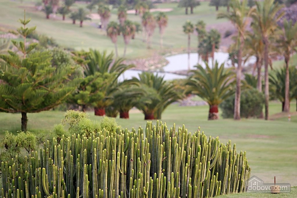 Villa Salobre Gorl Maspalomas Las Terrazas 6, Deux chambres (30653), 013