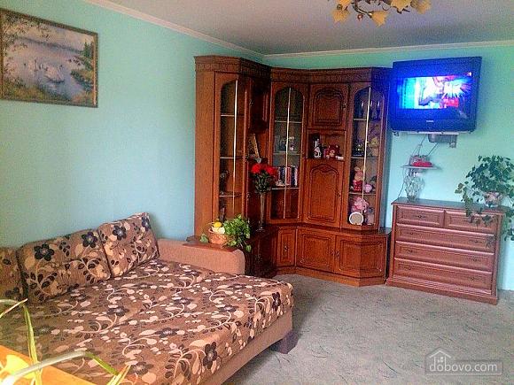 Квартира з видом на озеро, 1-кімнатна (20216), 001