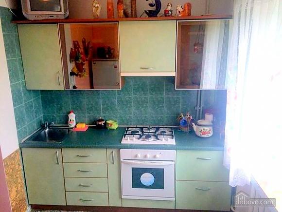 Квартира з видом на озеро, 1-кімнатна (20216), 003