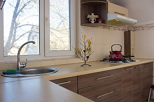 Apartment in Boryspil, One Bedroom, 003