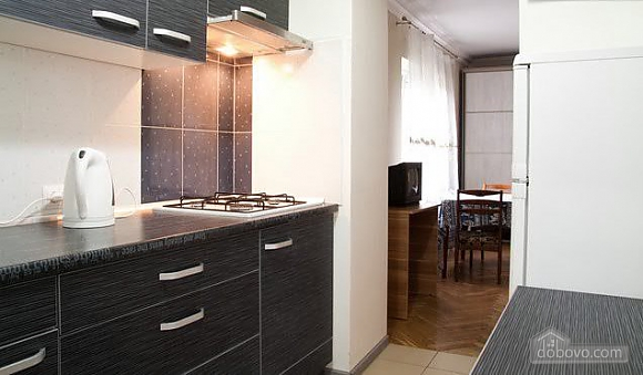 Apartment in the center of Lviv, Zweizimmerwohnung (73000), 007