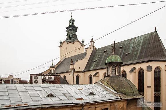 Economy apartment in center of Lviv, Una Camera (75191), 008
