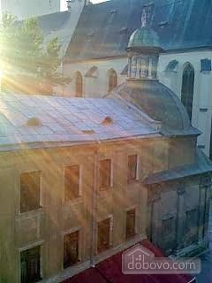 Economy apartment in center of Lviv, Una Camera (75191), 011