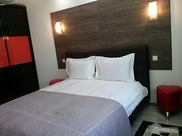 Luxury apartment, One Bedroom (76796), 007