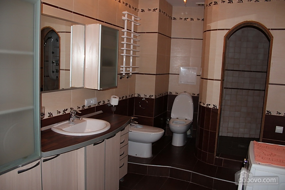Apartment in Odessa, One Bedroom (65219), 012