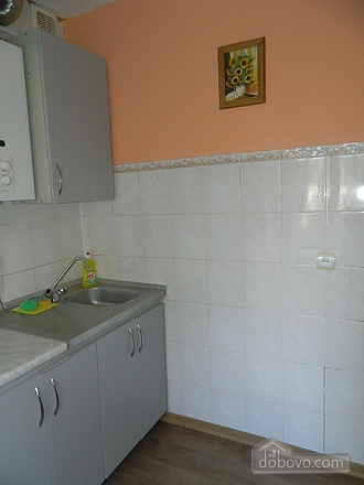 Affordable apartment near the city center, Studio (17614), 010