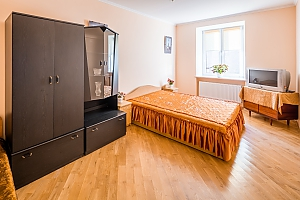 Apartment in the center of the city, One Bedroom, 001