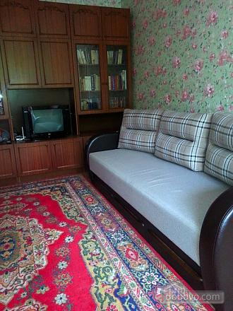 Квартира возле метро, 1-комнатная (45809), 004