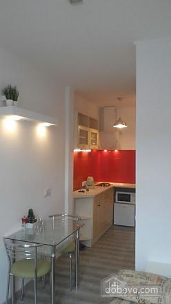Studio apartment near the Opera theatre, Monolocale (60760), 002