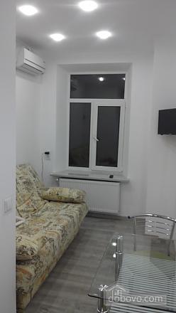 Studio apartment near the Opera theatre, Monolocale (60760), 001