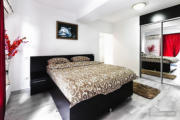 Cozy apartment in Chisinau, Studio (39528), 003