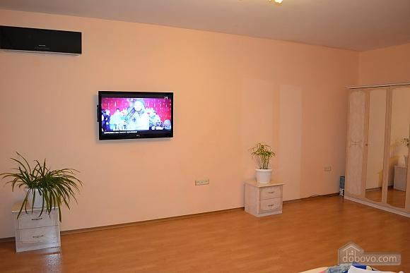 Spacious apartment for rest, Studio (63091), 003