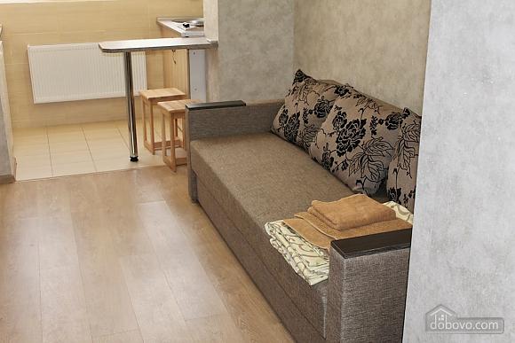 Однокімнатна квартира гостиного типу, 1-кімнатна (64484), 005