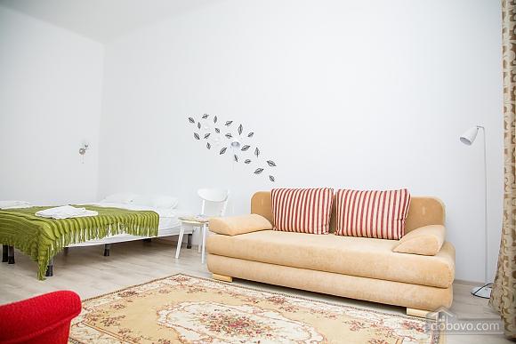Spacious apartment in Lviv, Studio (16519), 001