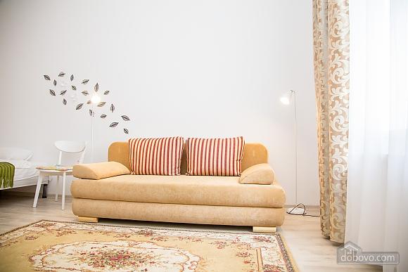 Spacious apartment in Lviv, Studio (16519), 002