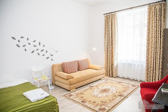 Spacious apartment in Lviv, Studio (16519), 006