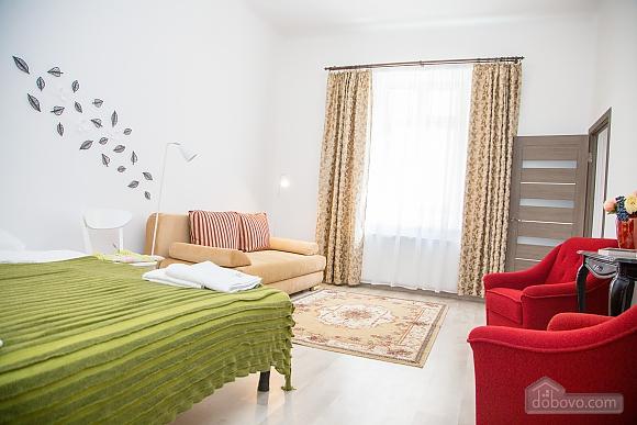 Spacious apartment in Lviv, Studio (16519), 007