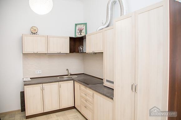 Spacious apartment in Lviv, Studio (16519), 013