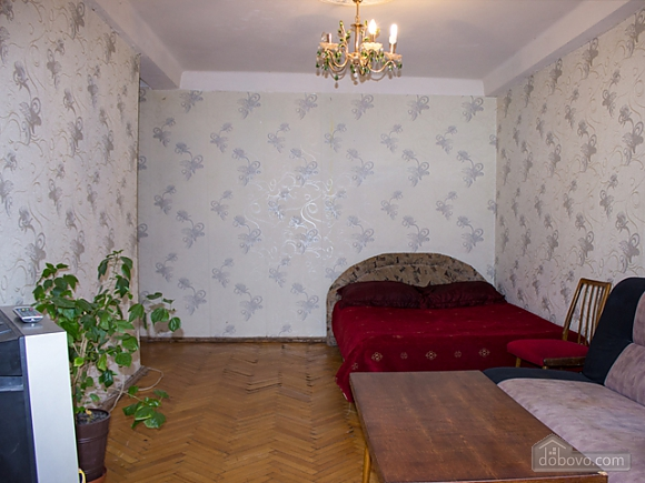 Spacious low-cost apartment, Un chambre (11206), 003