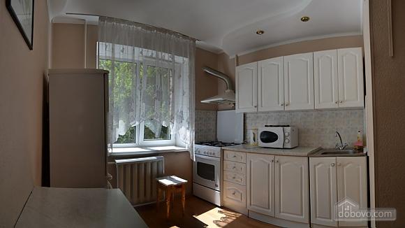 48 Shovkovychna, Un chambre (39224), 004